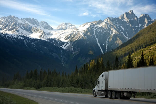 ¿Qué es el cartel de camiones?